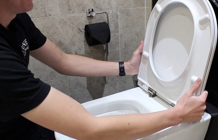 How To Replace A Toilet Seat Diy Guide