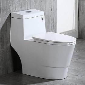 WOODBRIDGE T-0019, Dual Flush Elongated One Piece Toilet
